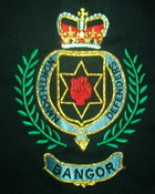 nddfb badge