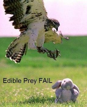 Free edible prey fail phone wallpaper by davincibello
