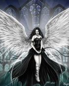 fairy20.jpg
