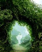 nature003.jpg