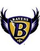 Baltimore Ravens 4.jpg