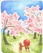 wlkg on cherry blossoms.jpg