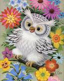 Free Spring Owl.jpg phone wallpaper by zestyred
