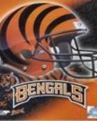 Cincinnati Bengals.jpg