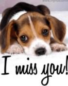 I miss you 2.jpg