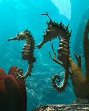 Free Sea Horses phone wallpaper by ispy1959