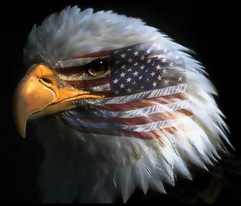 Free eagle_american_flag.jpg phone wallpaper by glazeyourdeaddonut