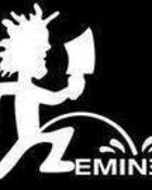feminem3.jpg