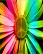 Peace Flower WP.jpg