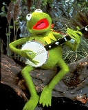 Free Kermit.jpg phone wallpaper by zestyred