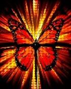 Butterfly Blast.jpg