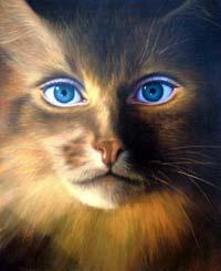 Free cat%20woman.jpg phone wallpaper by credulous2confute