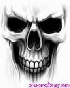 skull%201[1].jpg
