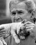 George Bush 1.jpg