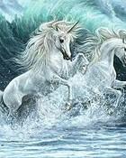 sea-unicorns-th.jpg wallpaper 1