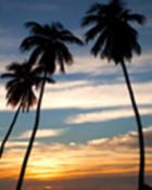 Sunset30875.jpg