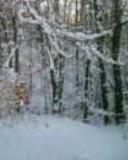 Free winter snow 2 phone wallpaper by cinderella5144