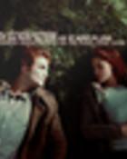 Twilight-Banners-twilight-series-5950051-120-60.jpg wallpaper 1