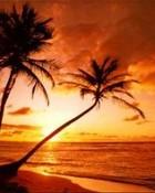 tropicsunset.jpg