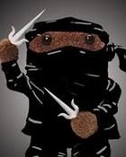 Ninja Domo