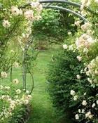 rose-garden-arch.jpg wallpaper 1