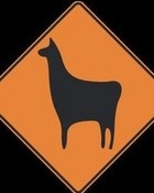 llama road sign