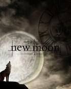 edward-cullen-jacob-black-new-moon-.jpg