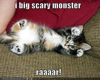 Free funny pictures cute fierce kitten.jpg phone wallpaper by kdjfa