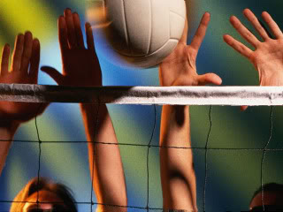 Free Volleyball.jpg phone wallpaper by bridget10