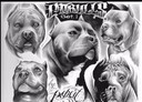 Free PitBull-2.jpg phone wallpaper by bigsexy1348