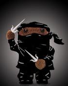 domo-ninja.jpg