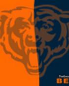 Blue orange bears.jpg