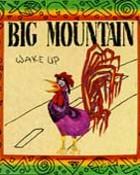 wake-up-big-mountain-cd-cover-art.jpg