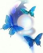 Blue_Butterflies.jpg