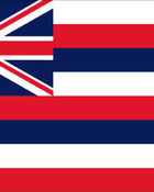 Hawaii Flag.jpg