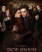 New Moon Poster Alternative