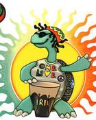 Turtle wallpaper 1