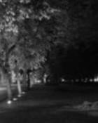 night time.jpg