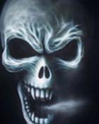 skull-1-2-1.jpg