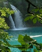 secluded-falls.jpg