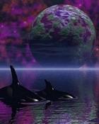 whales-planet wallpaper 1
