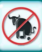 no bull sh!t