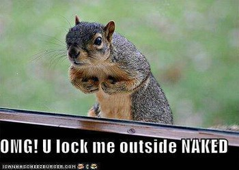 Free funny-pictures-squirrel-locked-o-1.jpg phone wallpaper by dayanaperez