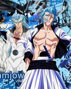 Grimmjow Stages.jp