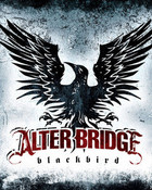 Alter Bridge Blackbird Cover