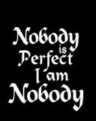 nobody is perfect.jpg