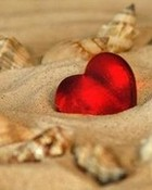 love heart & seashells on beach.jpg