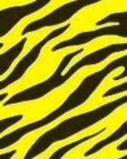 Yellow Zebra Print