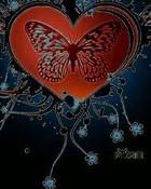 heart-bfly-flwUu.jpg
