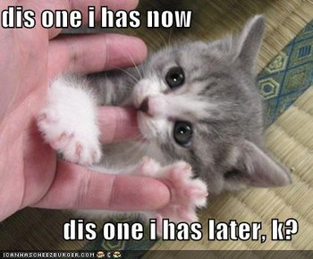 Free funny-pictures-kitten-eats-finger-later.jpg phone wallpaper by heatherlynch12